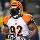 Cincinnati Bengals outside linebacker James Harrison (92) returns to Pittsburgh before an NFL football game between the Pittsburgh Steelers and the Cincinnati Bengals on Sunday, Dec. 15, 2013 in Pittsburgh. (AP Photo/Don Wright)
