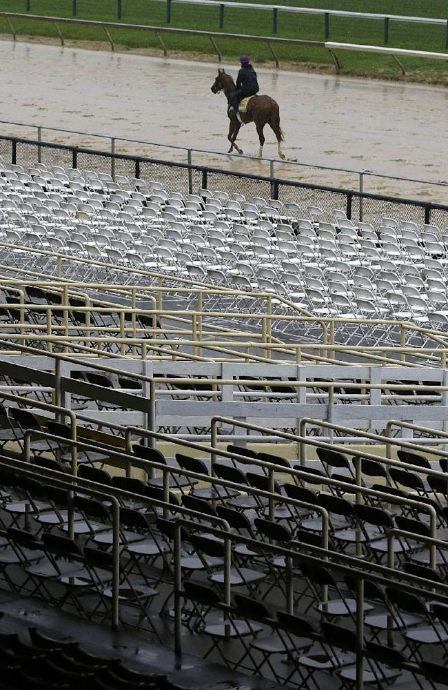 Ring Weekend, with an exercise rider aboard, walks along the track as rain falls at Pimlico Race Course in Baltimore, Friday, May 16, 2014. The Preakness Stakes horse race is scheduled to take place on Saturday, May 17