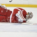 Detroit Red Wings vs Buffalo Sabres Getty Images