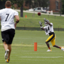 Steelers WR Antonio Brown aims for repeat of 2013 The Associated Press