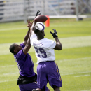 Mike Wallace aims for more than deep throws with Vikings The Associated Press