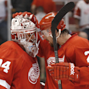 Detroit Red Wings goalie Petr Mrazek (34) celebrates their 3-0 win against the Toronto Maple Leafs with Brendan Smith (2) after a preseason NHL hockey game in Detroit Monday, Sept. 29, 2014 The Associated Press