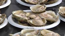 Bluff Oysters Draw Thousands To Festival