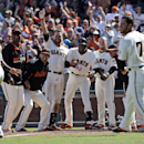 Members of the San Francisco Giants wait at the plate as teammate Brandon Crawford runs the bases following his walk-off home run to beat the Colorado Rockies during the 10th inning of a baseball game on Sunday, April 13, 2014, in San Francisco. San Franc