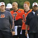 Cincinnati Bengals head coach Marvin Lewis, right, watches practice with offensive coordinator Jay Gruden, left, and quarterbacks Bruce Gradkowski (7) and Andy Dalton during NFL football training camp on Saturday, July 28, 2012, in Cincinnati. (AP Photo/Al Behrman)