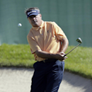 Paul Goydos chips onto the 15th green during the final round of the Valspar Championship golf tournament at Innisbrook Sunday, March 16, 2014, in Palm Harbor, Fla. (AP Photo/Chris O'Meara)