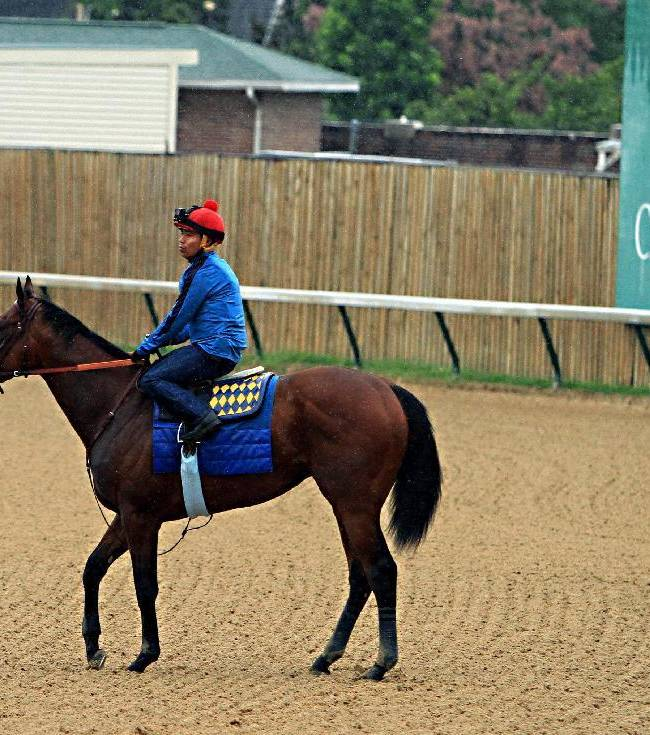 American Pharoah works out in morning showers at Churchill