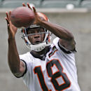 In this June 11, 2014, file photo, Cincinnati Bengals wide receiver A.J. Green catches a pass during an NFL football mandatory minicamp in Cincinnati. Cincinnati opens training camp Thursday afternoon, July 24 The Associated Press