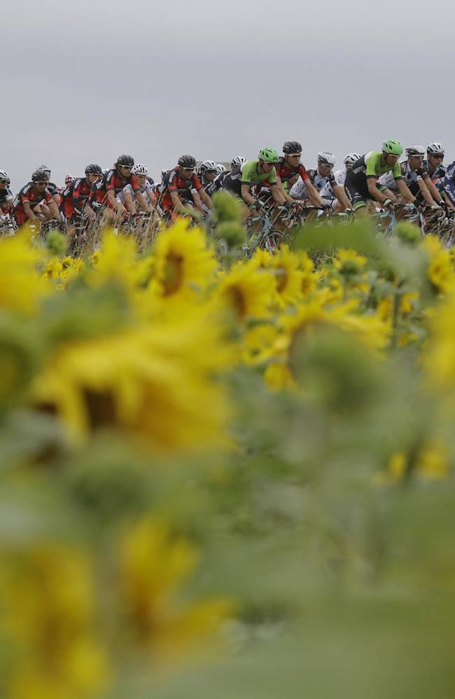 Tour de France heads into mountains for Stage 8