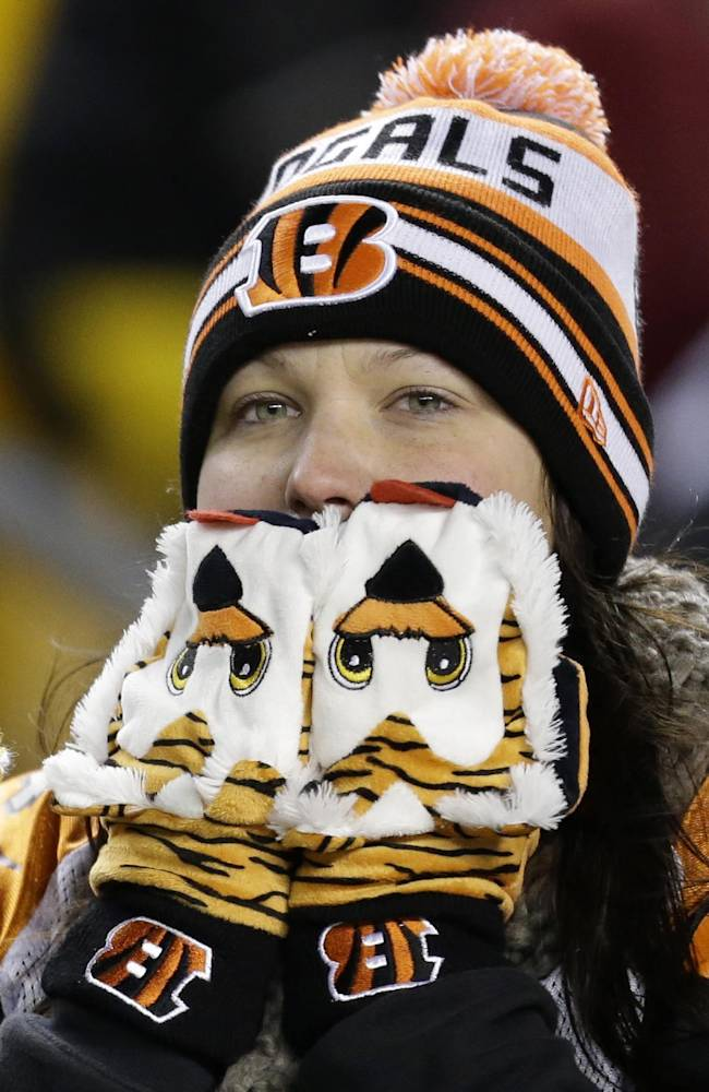 A Cincinnati Bengals fan watches the final minutes of an NFL football game between the Pittsburgh Steelers and Cincinnati Bengals in Pittsburgh, Sunday, Dec. 15, 2013. The Steelers won 30-20