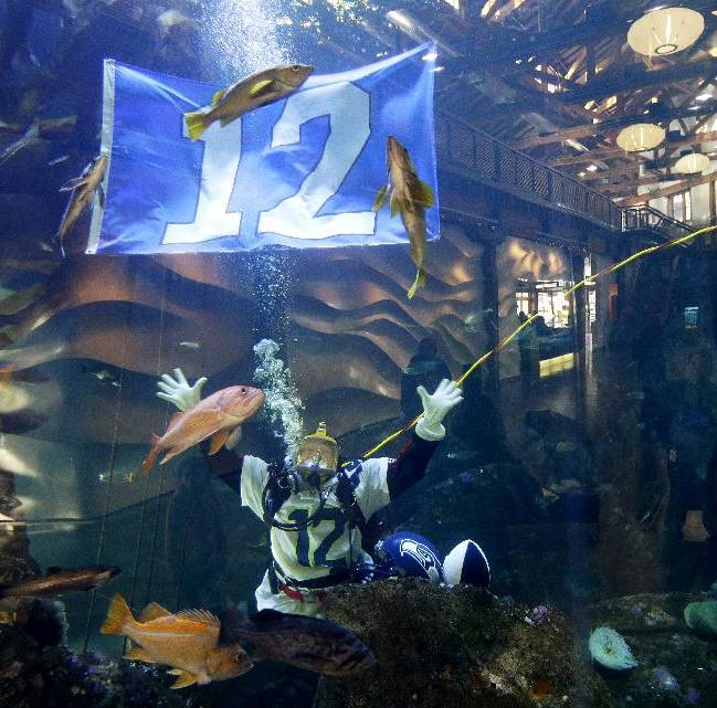 Nicole Killebrew, a diver at the Seattle Aquarium, wears a Seattle Seahawks NFL football No. 12 jersey and as she dives near a 12th Man flag in a large interactive marine life display Friday, Jan. 17, 2014, in Seattle. The Seahawks will play the San Francisco 49ers on Sunday for the NFC championship in Seattle, and the aquarium was one of many locations around the city promoting the game