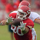 Kansas City Chiefs tight end Anthony Fasano (80) pulls in a reception during a NFL training camp, Wednesday, July 30, 2014 on the Missouri Western State University campus in St. Joseph. Mo The Associated Press