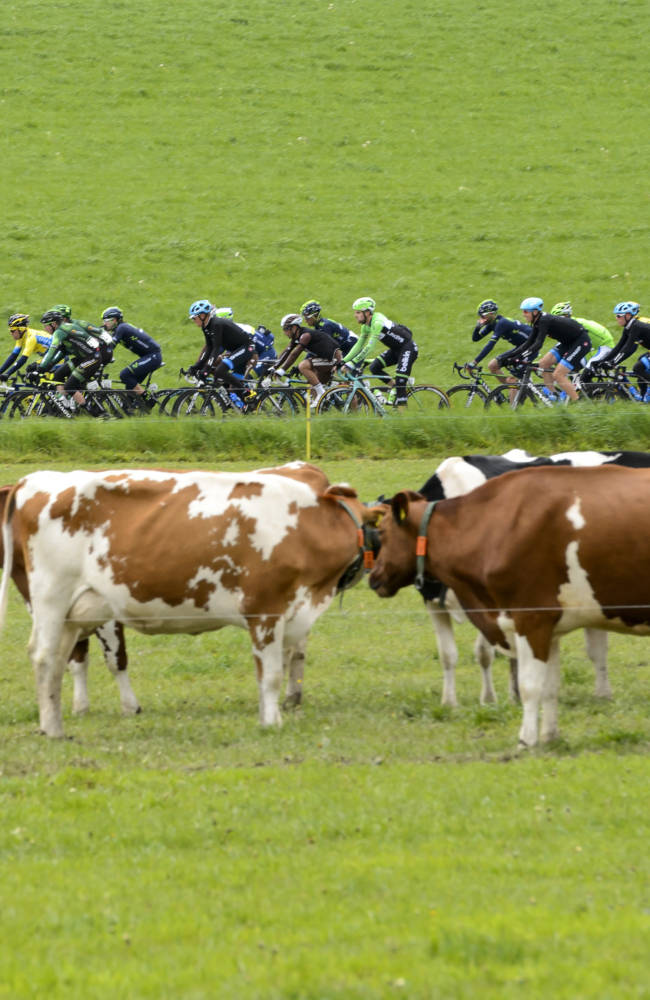 Albasini gets 3rd stage win at Tour of Romandie