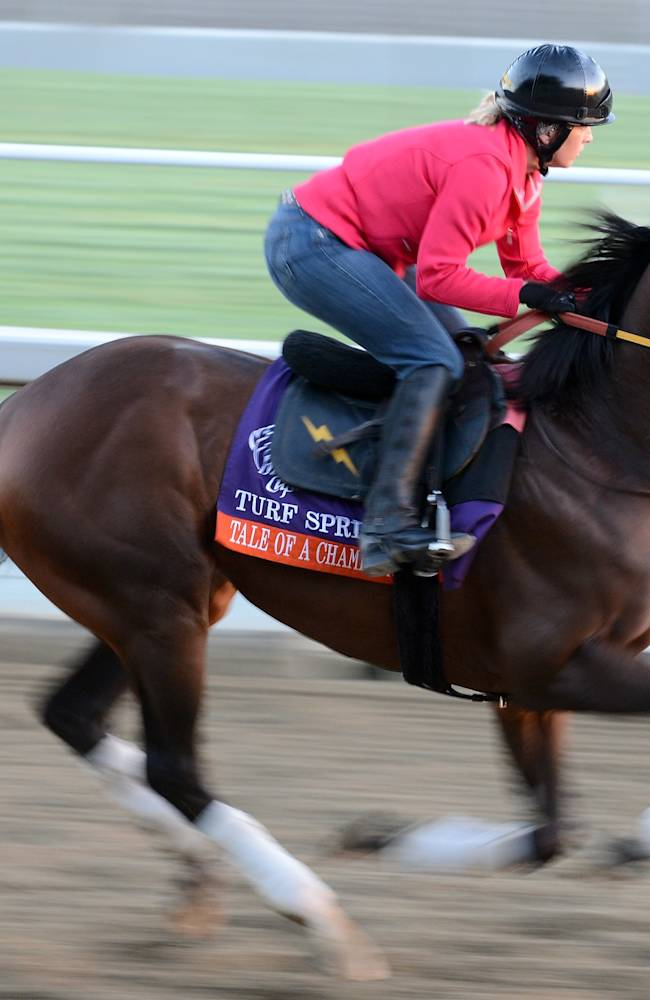 2012 Breeders' Cup - Preview