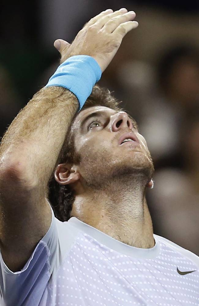 Juan Martin del Potro of Argentina celebrates his win over Nicolas Almagro of Spain at the semifinal of the Japan Open Tennis Championships in Tokyo, Saturday, Oct. 5, 2013