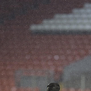 Real Madrid's Cristiano Ronaldo warms up in a heavy rain shower as he trains with teammates at Anfield Stadium, in Liverpool, England, Tuesday, Oct. 21, 2014. Real Madrid will play Liverpool in a Champion's League Group B soccer match on Wednesday