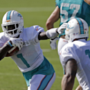 Miami Dolphins wide receiver Damian Williams (1) runs the ball during NFL football training camp in Davie, Fla., Sunday, July 27, 2014 The Associated Press