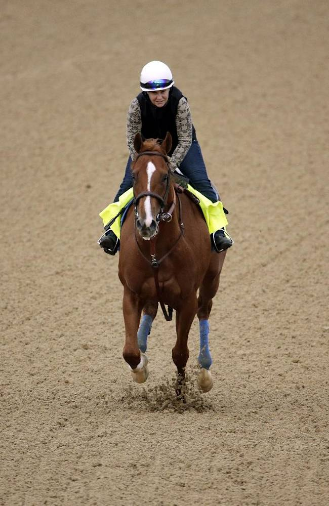 Exercise rider Dana Barnes takes Kentucky Derby hopeful Chitu for a morning workout at Churchill Downs Wednesday, April 30, 2014, in Louisville, Ky