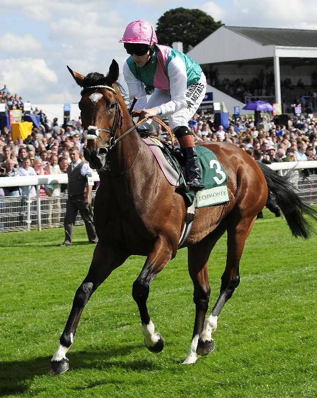 Frankel's first foal to be auctioned on Monday
