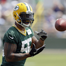 File-This June 17, 2014, file photo shows Green Bay Packers Julius Peppers catching a ball during NFL football minicamp in Green Bay, Wis. Peppers has just the kind resume McCarthy was looking for in trying to add impact players on defense. Sure, he's 34