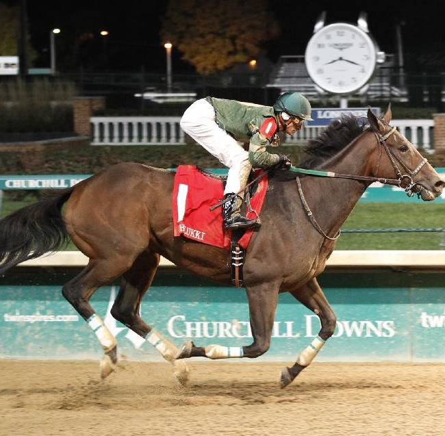 In this photo provided by Churchill Downs, Don't Tell Sophia, with Joe Rocco Jr. aboard, runs en route to victory in the $165,200 Chilukki (Grade II) horse race on Saturday, Nov. 2, 2013, at Churchill Downs in Louisville, Ky