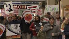 Kiwis Protest Against GM Food