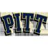 (16) Pittsburgh
