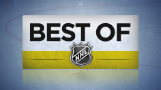 Best Saves: week 25