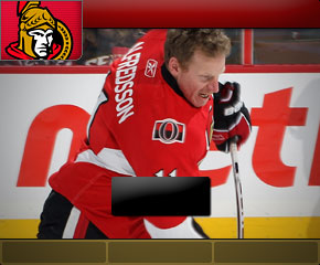 Click here to vote for the Ottawa Senators