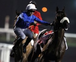 French jockey Mikael Barzalona jumps off Monterosso after winning the Dubai World Cup