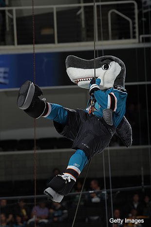 Teenage girl suffers concussion after alleged Sharks fan attack