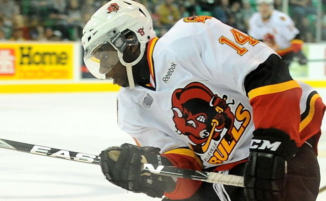 Belleville Bulls' Jordan Subban faces tall task as smallish defenceman