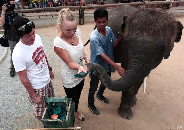 Wozniacki and McIlroy discuss Christmas gifts, feed elephants