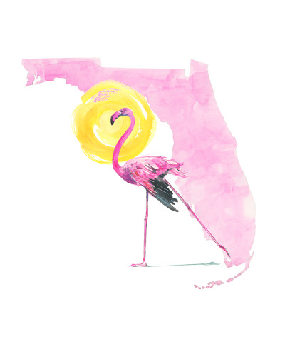 Florida Flamingo Hot Sun-8x10