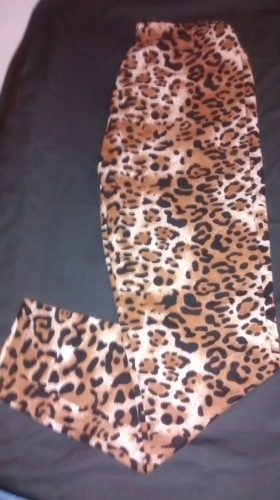 Leggings , Leopard and cheetah pop