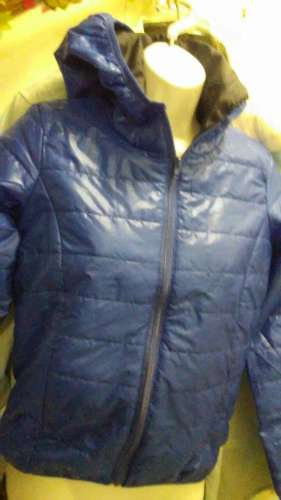 Royal Blue , Thin Puffer with Hoodie