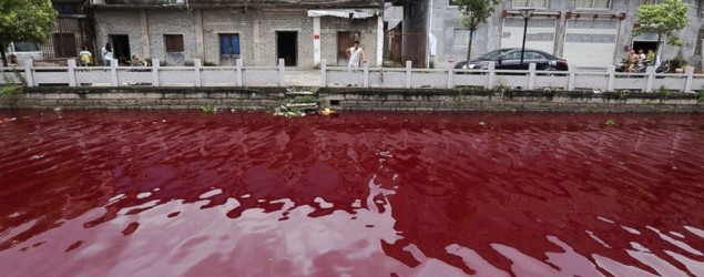 River in China mysteriously turns blood red overnight. (ABC News)