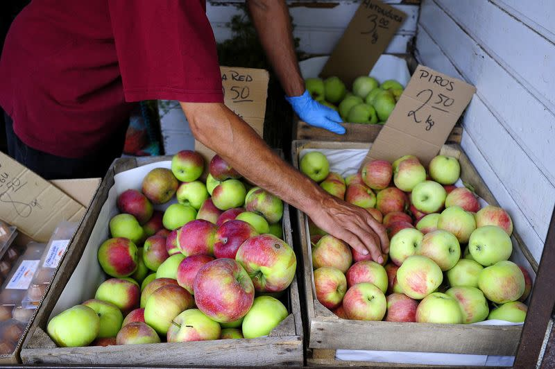 Apples are displayed at a fruit and vegetables market in Warsaw