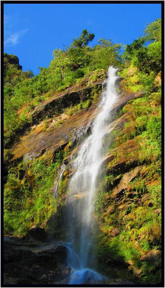"The Chhangey Falls in Kaluk, Sikkim is located 10 km from Peling on the road to Dentam. The waterfall plunges from a great height and loses itself in the dense forests. Only 4-wheel drives can approach the road from where this waterfall can be viewed.<br><br>By <a target=""_blank"" href=""http://www.flickr.com/photos/90137095@N04/"">ssanchari</a>"