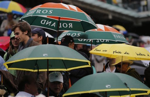 Rain halts Djokovic-Nadal final at French Open