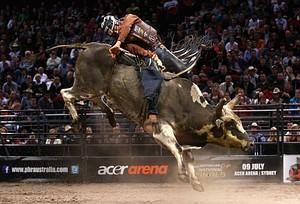 America's Fastest Growing Sport: Professional Bull Riding