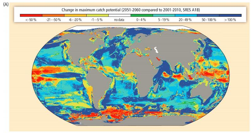 Change in catch potential to world fisheries