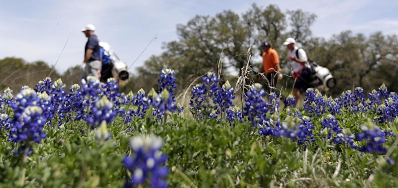 Bowditch leads Texas Open