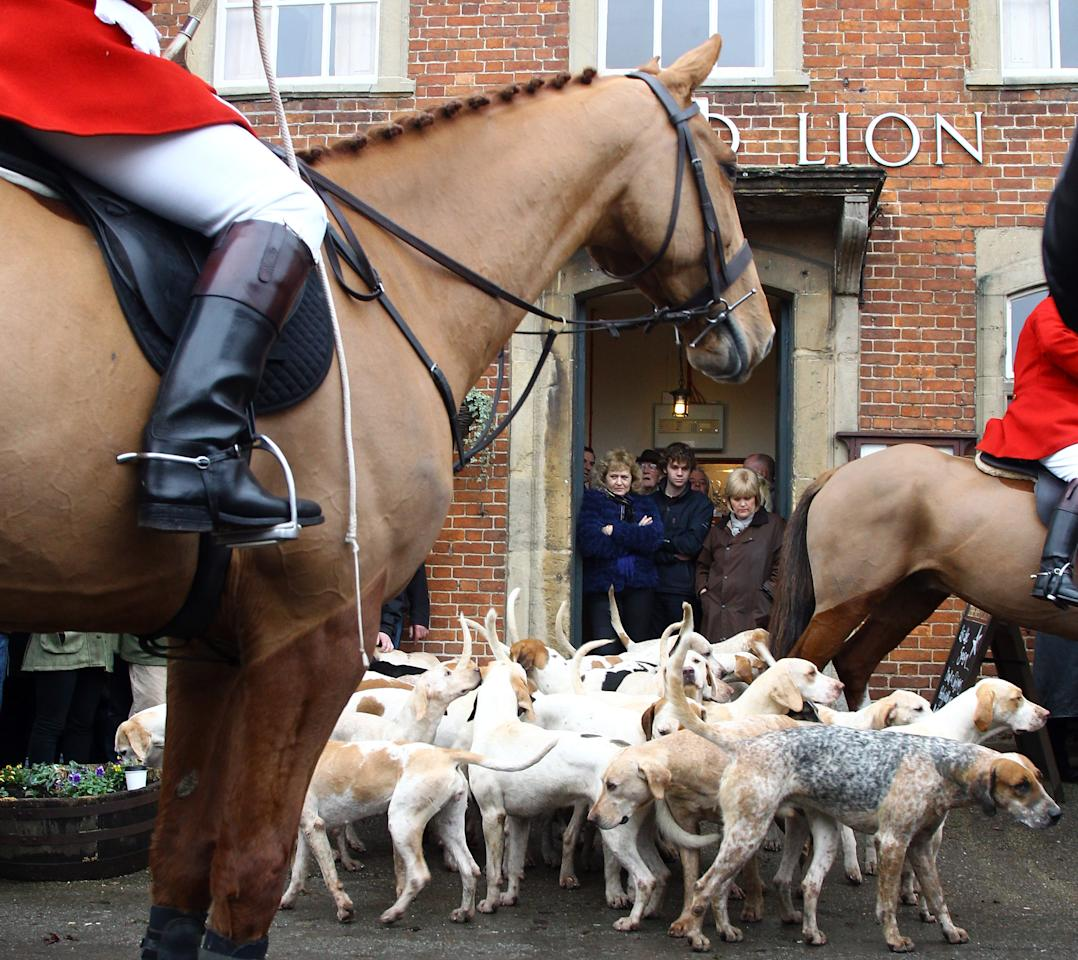 """LACOCK, UNITED KINGDOM - DECEMBER 26:  Riders with the Avon Vale Hunt and hunt supporters gather outside the Red Lion public house for their traditional Boxing Day hunt, on December 26, 2011 in Lacock, England. As hundreds of hunts gathered today for their traditional Boxing Day meets, Agriculture Minister Jim Paice has said the Hunting Act """"simply doesn't work"""" and added that there should be a vote on whether to repeal the act when there was """"time in the parliamentary calendar"""".  (Photo by Matt Cardy/Getty Images)"""