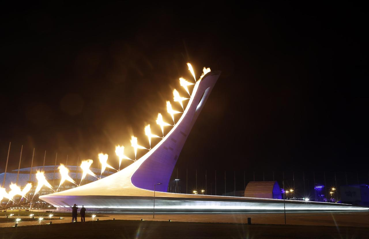 torch lighting at the 2014 opening ceremony gallery