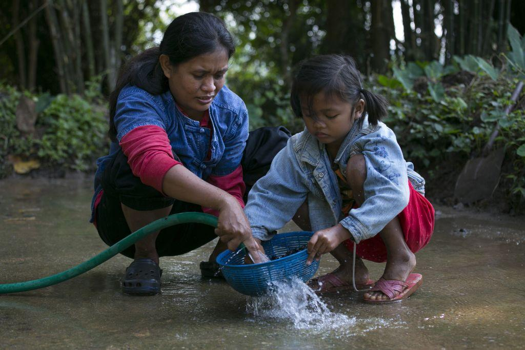 Niang, a mahout's wife, and her daughter Ari, 6, wash coffee beans after picking them from the dung at an elephant camp at the Anantara Golden Triangle resort in Golden Triangle, northern Thailand.