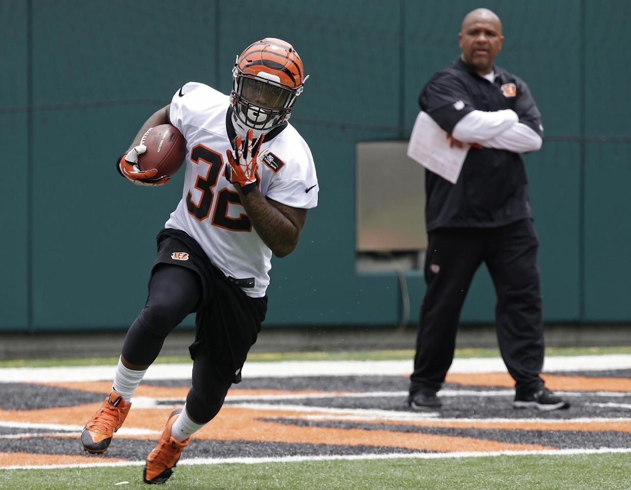 Cincinnati Bengals second round draft pick Jeremy Hill, a running back out of LSU, runs the ball under the eye of offensive coordinator Hue Jackson during an NFL football mandatory minicamp, Tuesday, June 10, 2014, in Cincinnati. (AP Photo/Al Behrman)