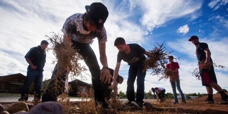 Union High football players tend to weeds as part of their community service work en route to reinstatement — Deseret News
