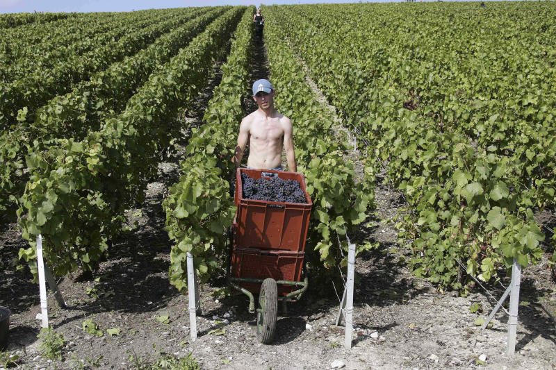 Champagne loses fizz in Europe after tough year