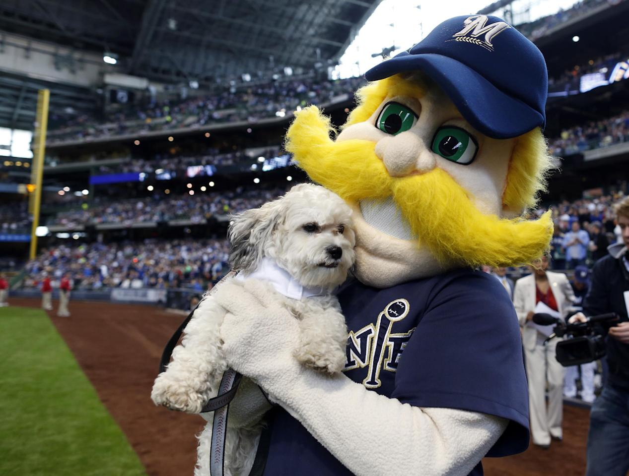 Bernie Brewer, right, carries Hank, the unofficial mascot of the Milwaukee Brewers, out for opening ceremonies before a baseball game between the Brewers and Atlanta Braves at Miller Park, Monday, March 31, 2014, in Milwaukee. (AP Photo/Jeffrey Phelps)